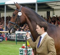 Wild Lone and Harry Meade (GBR)