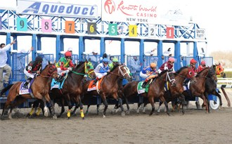Twenty-one horses died at Aqueduct over a four-month period last winter.