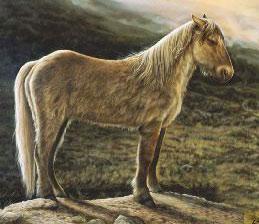 An artist's impression of the Yukon Horse, dating back 26,000 years. © Yukon Beringia Interpretive Centre