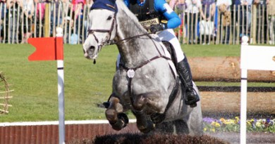 Tiana Coudray (USA) on Ringwood Magister