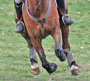 The FEI has published an audit of Eventing it commissioned. © Al Crook