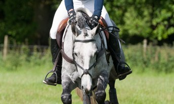 Tom Gadsby, pictured on Summer in the City, at Stratford Hills Horse Trials, on June 16.
