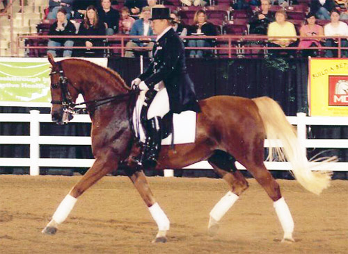 Half-Arabian daughter Fancy Trick with Hilda Gurney in a dressage demonstration at the port Horse Nationals.