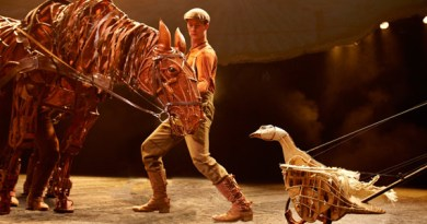 War Horse at the New London Theatre.