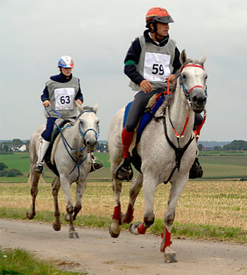 Among proposed rule changes for endurance is that courses must not contain more than 10 percent of hard-surface public roads intended for vehicle use. Pictured is 2006 2006 World Endurance Champion Miguel Vila Ubach of Spain, at Aachen.