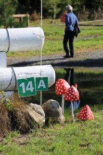 Taupo-3DE-2014-2433