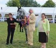 Peter Upton and Princess Alia with stallion class winner Ruadi.