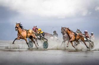 "Equestrian Venue Category Winner: Jana Spindler (GER) ""Floor of the Ocean"""
