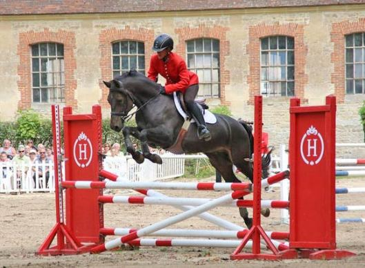 Several young sport horses were put through their paces at the demonstration.