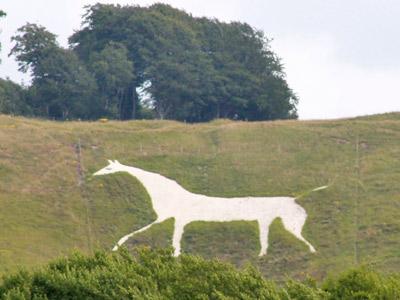 The White Horse of Cherhill.