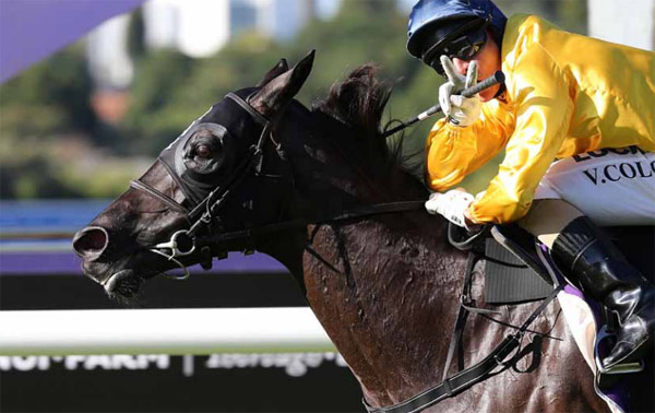 New Zealand race mare Silent Achiever is being bred to Frankel this season.