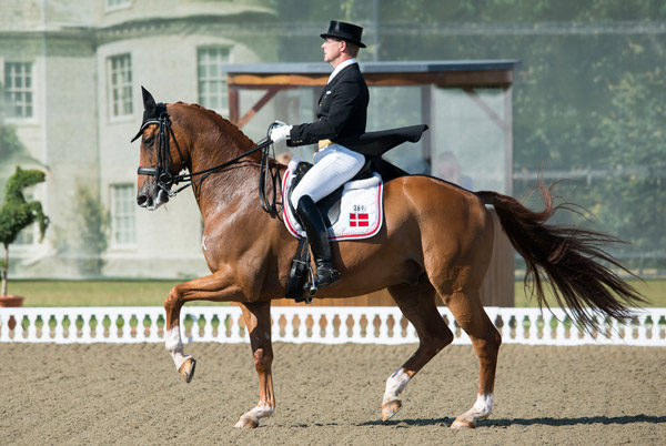 Anders Dahl and Wie-Atlantico de Ymas led the Danish team to victory in the final Nations Cup dressage competition, at Hickstead in Britain, in 2015.