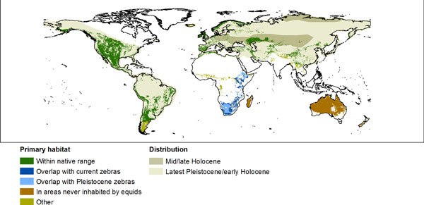 Potential habitat (suitable land cover) for feral horses.