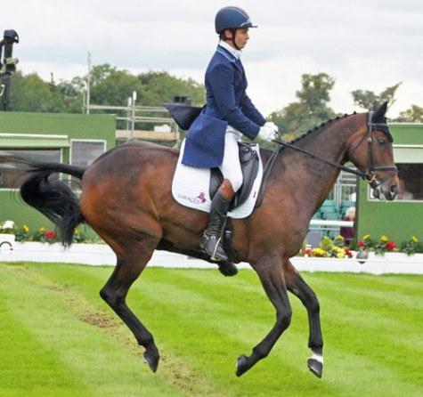 43rd: Francis Whittington (GBR) and Hasty Imp - on three legs?