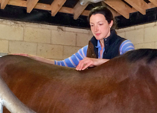 McTimoney animal practitioner Dr Emma Punt treating a horse.