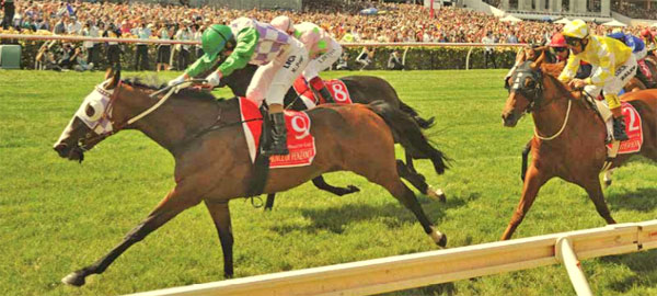 Prince Of Penzance and Michelle Payne power to the lead in the 2015 Melbourne Cup.