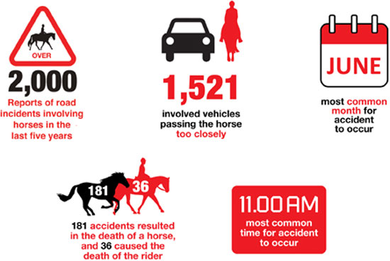 The British Horse Society's breakdown of statistics gathered over the last five years on its dedicated website, www.horseaccidents.org.uk.