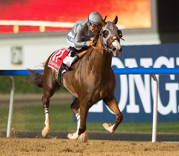 Do nasal strips help horses? - Horsetalk co nz