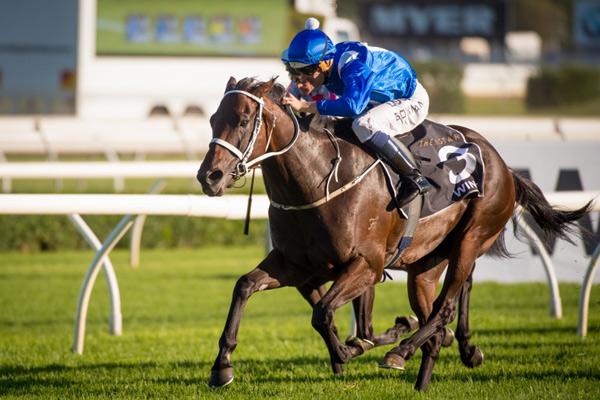 Australian racemare Winx.