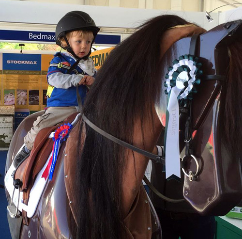 RoboCob takes Oscar Wilkins, 21 months old, for a ride at theRoyal Windsor Horse Show during hisTake up the Reins Tour of Great Britain.