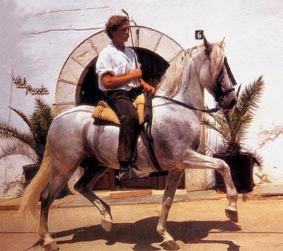 Klaus Ferdinand Hempfling riding Harmón.