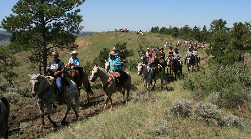 Riders on the 52nd annual Chief Joseph Ride, in Montana earlier this year. © Kristen Reiter, courtesy of the Appaloosa Horse Club
