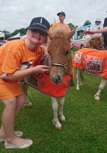 Violet Hyde with one of Toyhorse International's mini horse, raising funds for Brooke at the Gold Cup Final - La Indiana v. King Power Foxes.