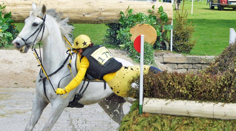 Computer modelling will be used to drill down into Eventing mishaps. The riskiest tumbles in Eventing are not like this one, but involve horses taking a rotational tumble over jumps. Photo: Mike Bain