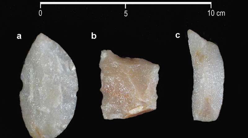 A sample of the lithic artifacts found in the levels associated with extinct fauna, all in quartzite. (a) a side scraper; (b) a retouched flake; (c) a retouched flake. Images: Politis et al