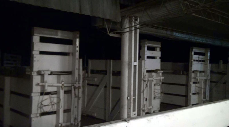 Stalls used for blood extraction in a building on a farm in Argentina.