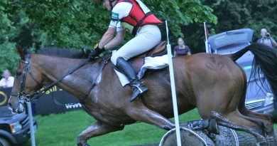 The science of eventing: What happens when a horse hits a jump?