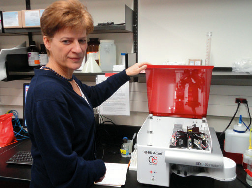 """Ontario Veterinary College researcher Dorothee Bienzle: """"Equine leukemia is a rare and terrible disease which is challenging to diagnose."""""""