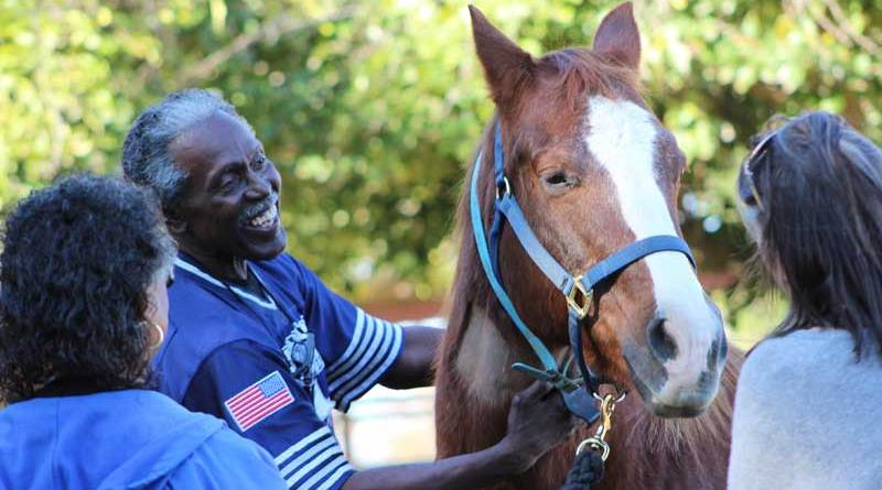 "Being around horses has brought back a lot of happy memories for Richard Driver. ""I'm more conscious of my environment and my emotions while with horses,"" he says. Photo: Elaine Chan"