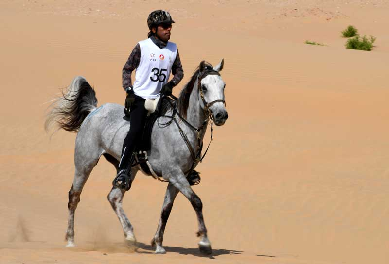 A competitor in action at Boudheib, in Abu Dhabi.