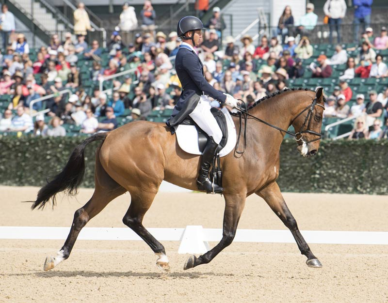 Clark Montgomery and Loughan Glen took the lead in the dressage with a score of 33.6.