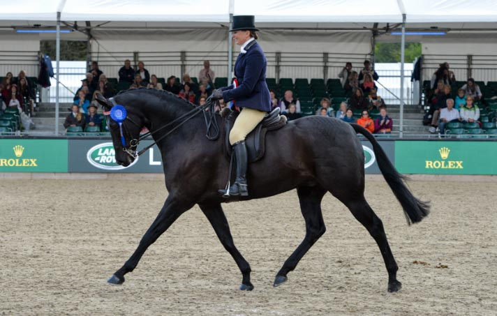 Elusiveand Jo Bates won the Count Robert Orssich Hack Championship at Windsor.