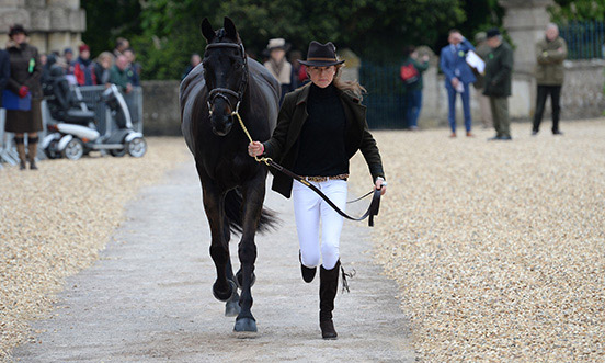 Kathryn Robinson (Canada) and Let it Bee at the first horse inspection.