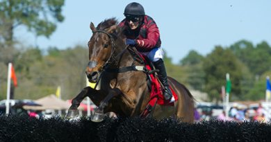 A fund has been set up to help inured British jumps jockey Michael Mitchell.