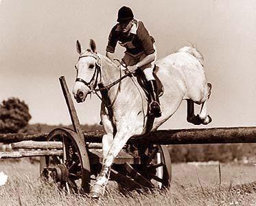 1965 European champions Marian Babirecki and Volt.