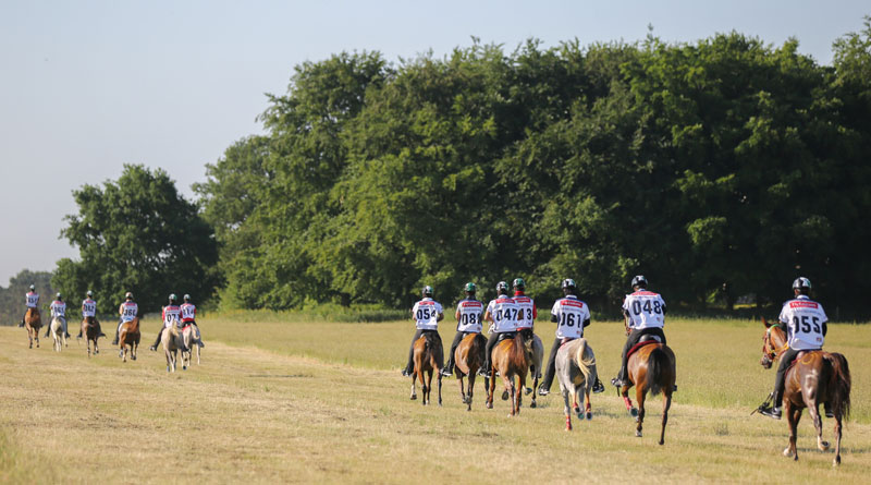 Next month's UK Endurance Masters at Euston Park is offering €2 million in prizemoney.