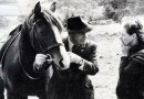 New volume honors renowned Australian horse trainer's legacy