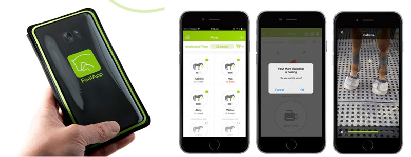 Several mares can be monitored via Foal App, with audio and video also able to be used.