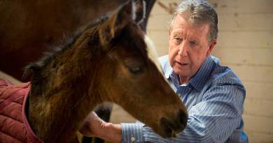 Professor John Madigan made a crucial discovery about a disorder has puzzled horse owners and veterinarians for a century.