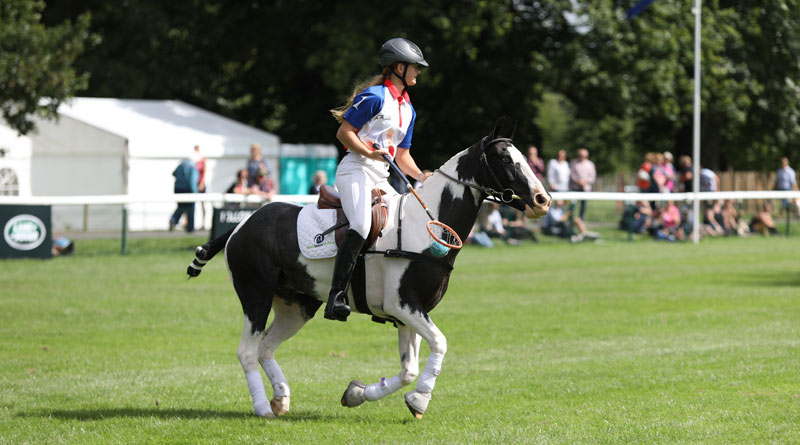 World Horse Welfare Starsky and rehomer Grace Cooper show their polocrosse skills.