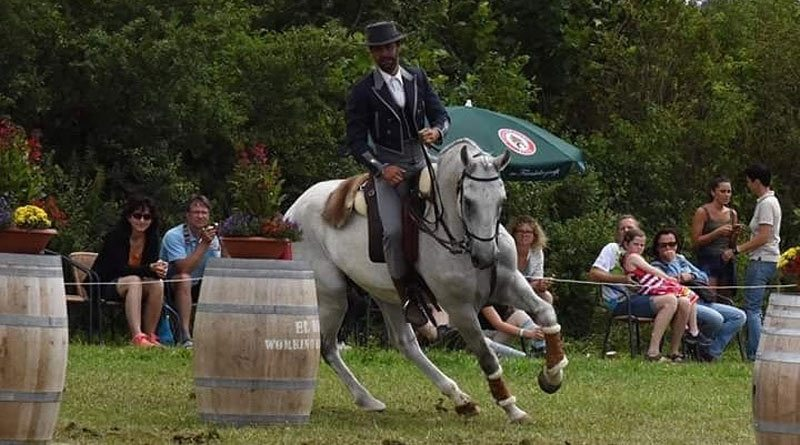 Pedro Ribeiro and Antiochus Interagro in Working Equitation in Germany.