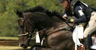 The Irish Sport Horse Cooley Cross Border (Diamond Roller x Osilvis), ridden by Kim Severson.
