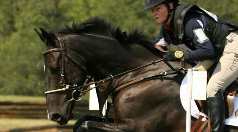 The Irish Sport Horse Cooley Cross Border (Diamond Roller x Osilvis), ridden by Kim Severson.