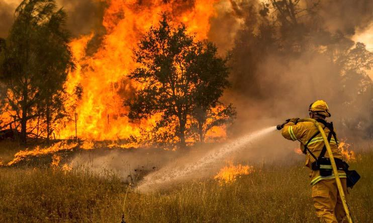 A firefighter works to contain a forest fire.