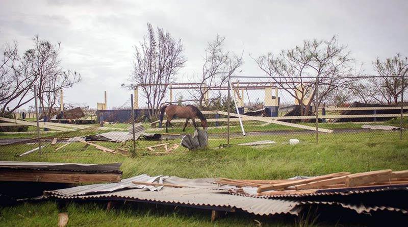Devastation in St Croix, in the US Virgin Islands.
