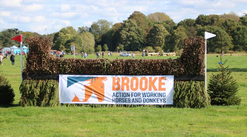 The Brooke cross-country jump at Osberton Horse Trials. Brooke was the charity beneficiary of this year's event.